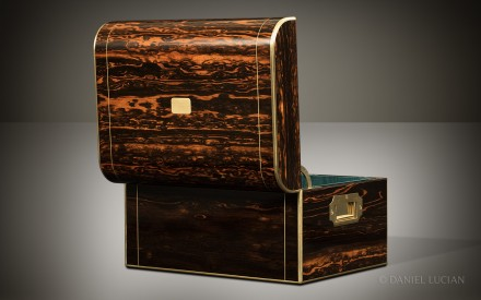 Antique Jewellery Box in Coromandel